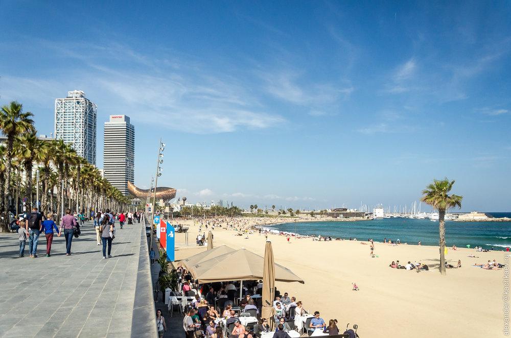 barcelona beach brunch off the grid