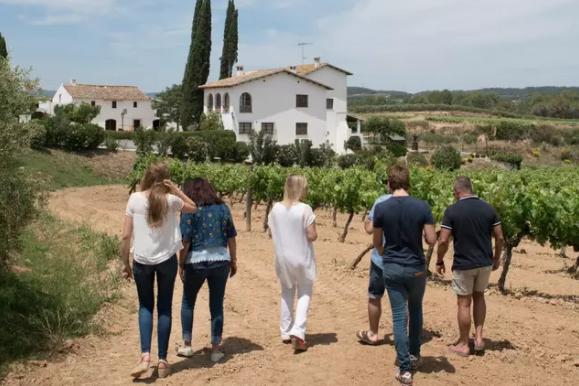 barcelona off the grid vineyard