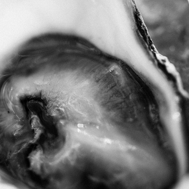 """""""Eating a raw oyster is like French kissing a mermaid"""" #foodphotography by @travishallmark for @texasmonthly"""