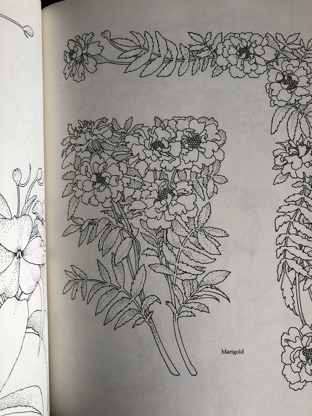 from the flower designs book. This book has a great variety of flowers in it!
