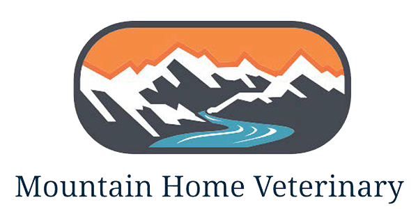 Mountain Home Veterinary Clinic