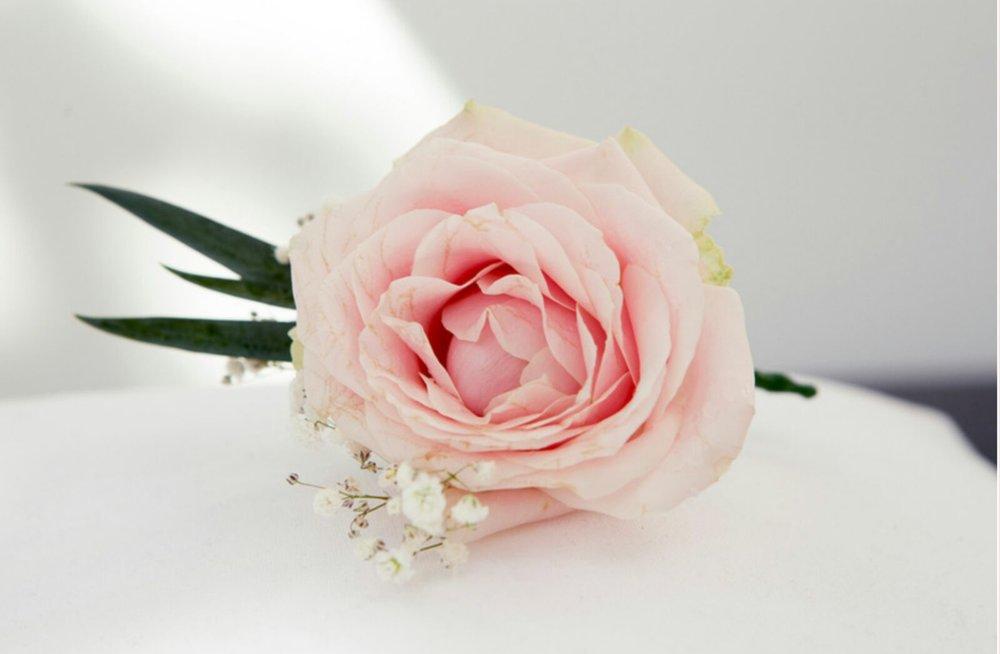 Pastel Pink Blush Buttonhole