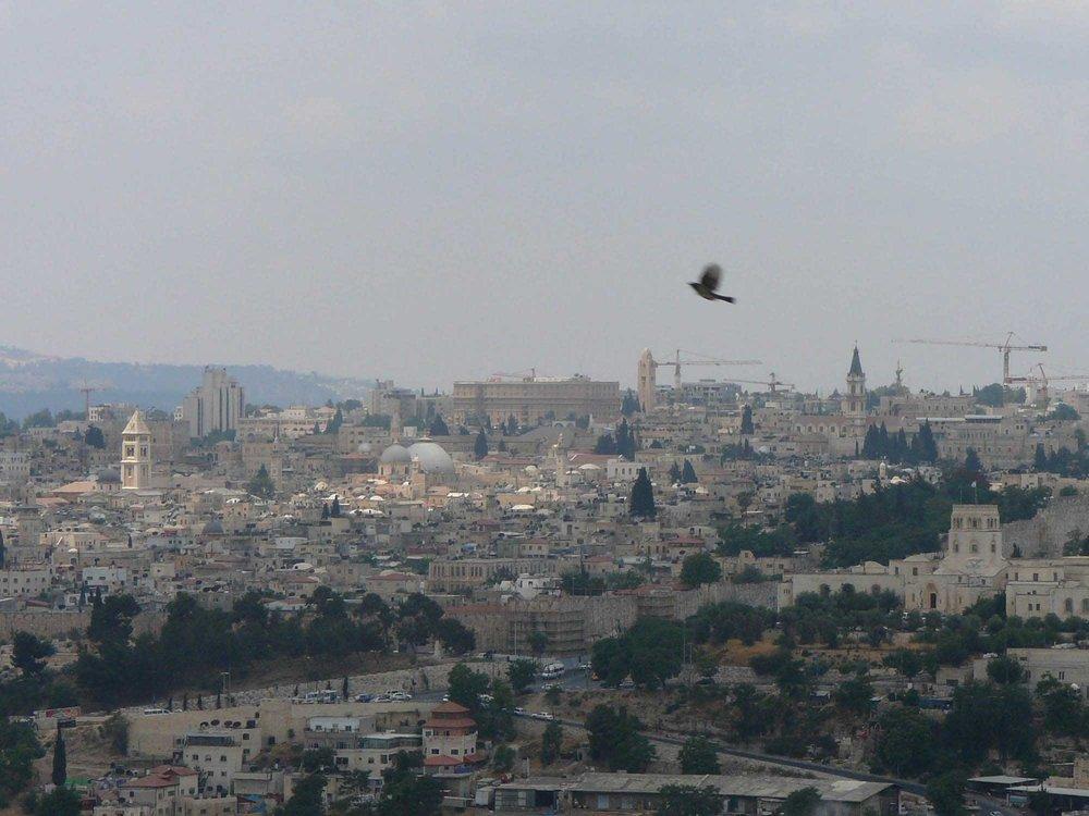 israel13.jpg