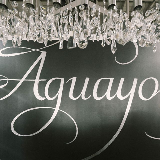 I'm gonna swing from the chandelier, from the chandelier #SalonAguayo