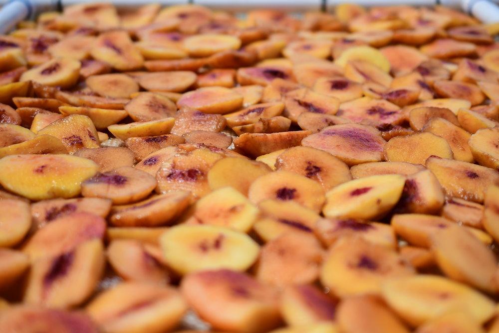 Drying peaches.JPG