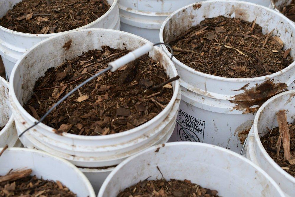 Compost Buckets.jpg