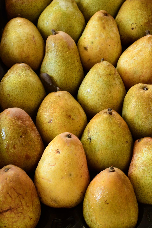 Warren Pears.JPG