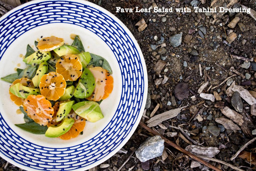 Favaleafsalad