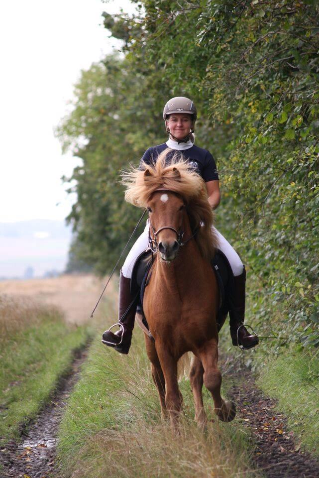 Dagmar Hestetræning.jpg