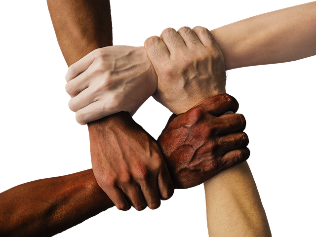 Pixabay_Four Hands Together_hand-1917895_640.png