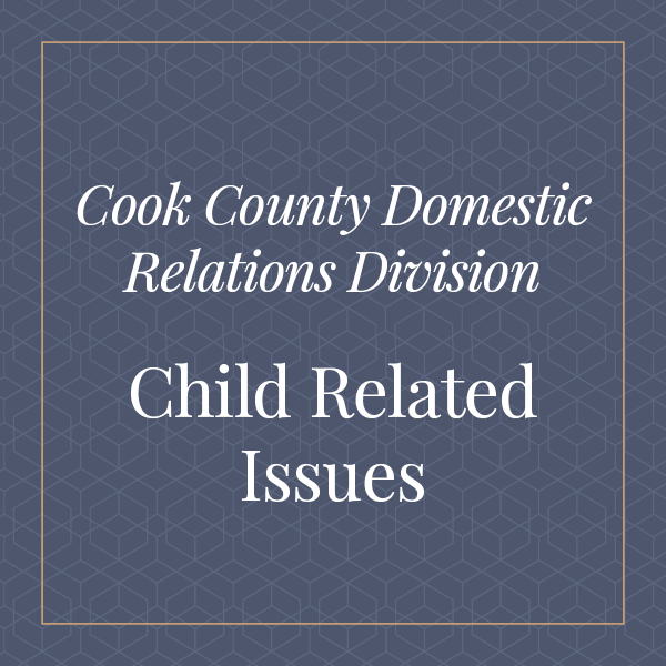 Cook County Domestic relations division child related issues