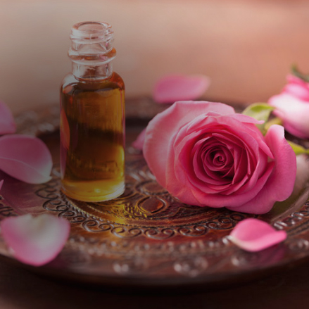 Discover the healing properties of essential oils -