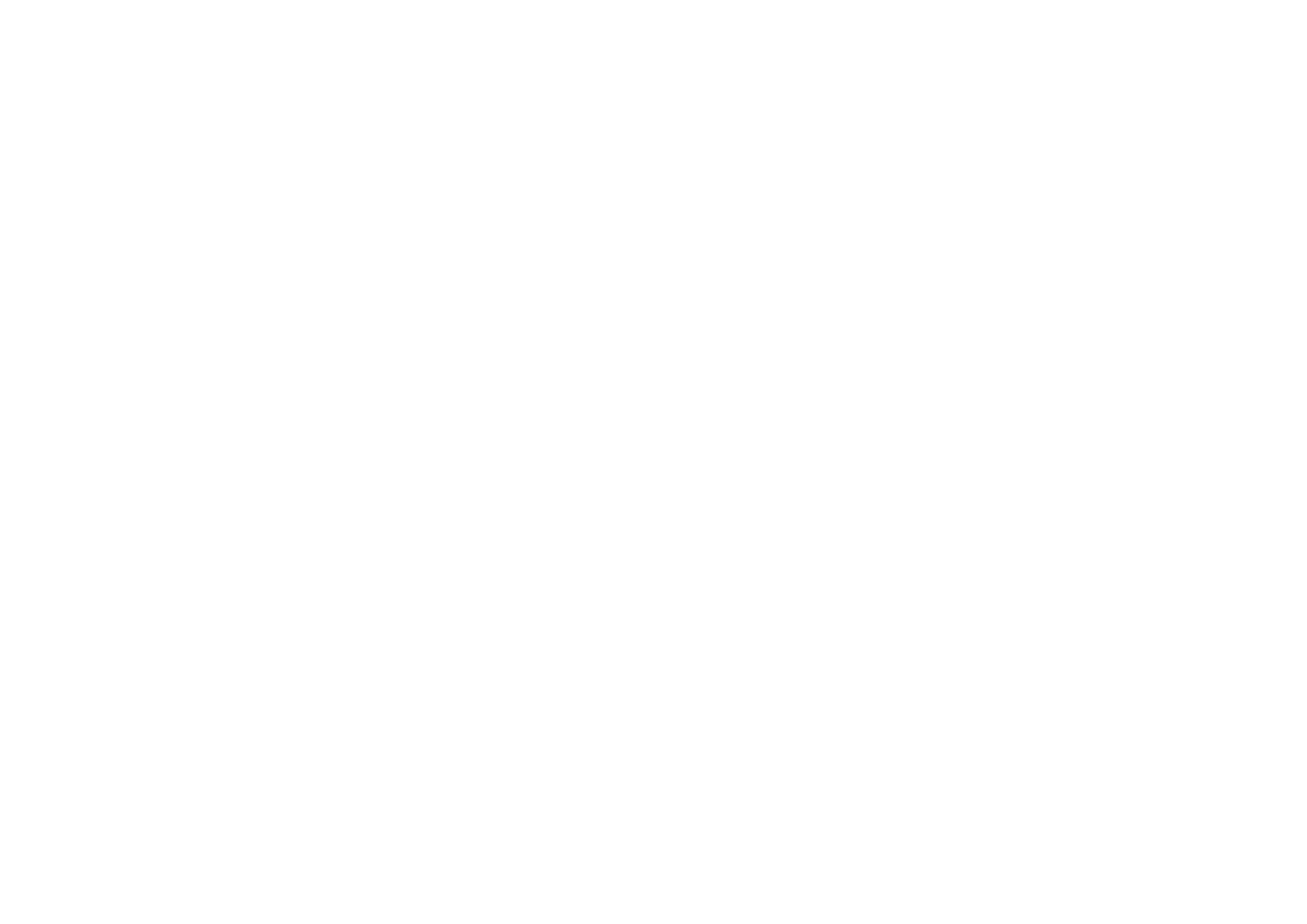 Pet photography | Dog photography | Cardiff, The vale and South Wales - Dan Jenkins Photography