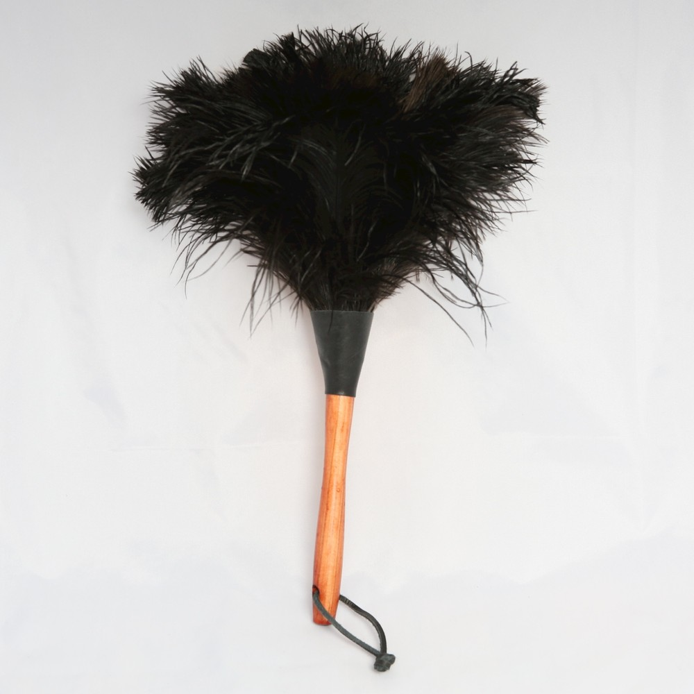 Ostrich Feather Dusters – Ruffling a Few Feathers! — Plain Useful