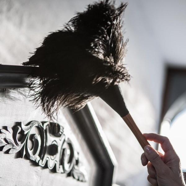 Spring Cleaning – Dusting.3.jpg