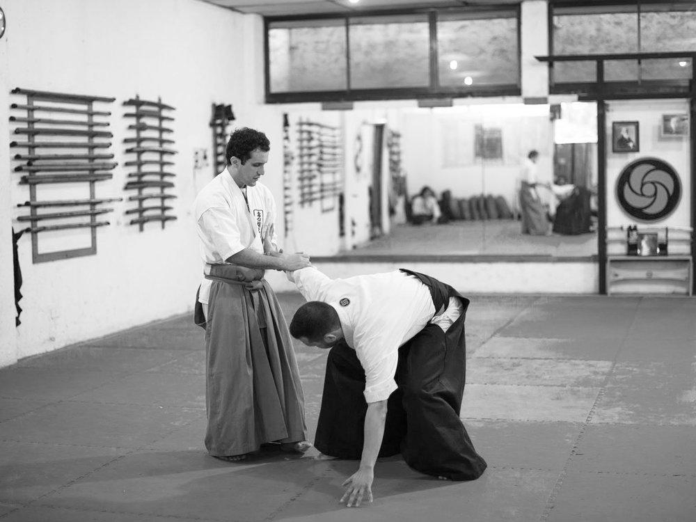 LUIS aikido.jpg
