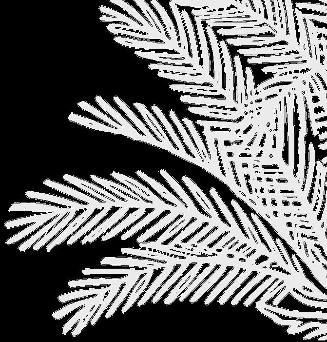 Palm_bg_left.png