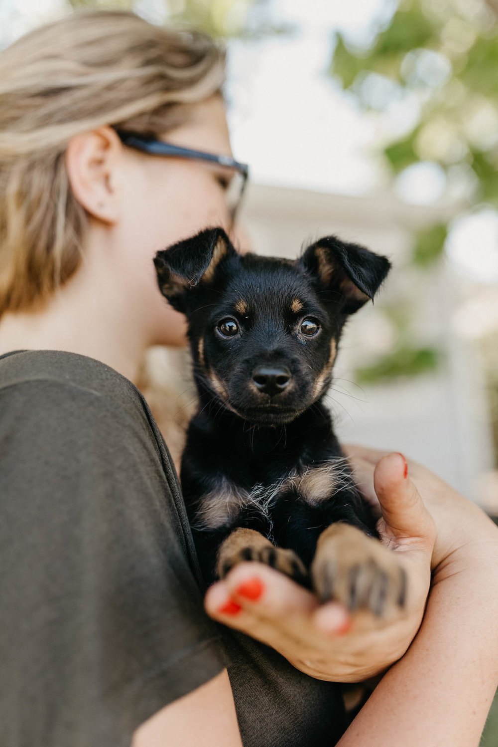 4. Am I able to Have a Pet Where I live? do i plan to move?  - Many rental communities throughout the Bay Area do not allow pets or have animal breed, size, age restrictions.Most landlords require an additional pet deposit. If you move in the future, your choice of housing will probably be restricted.