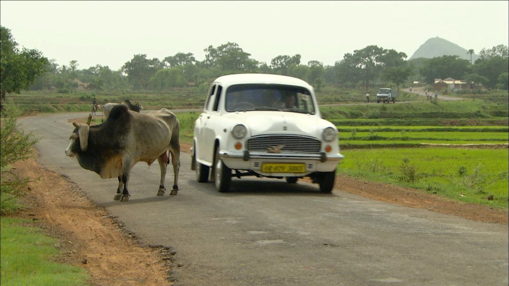 FFOTW_108_car and bull.jpg
