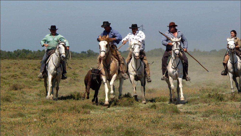 FFOTW_107_riders wi bull.jpg