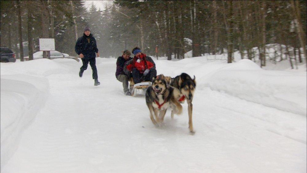 FFOTW_104_jm dog sled.jpg