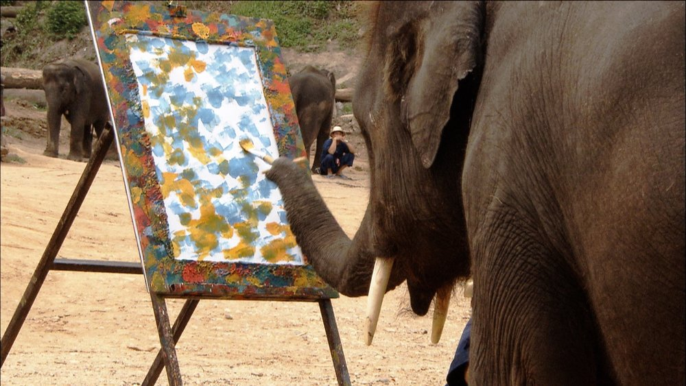 FFOTW_114_elephant paints.jpg