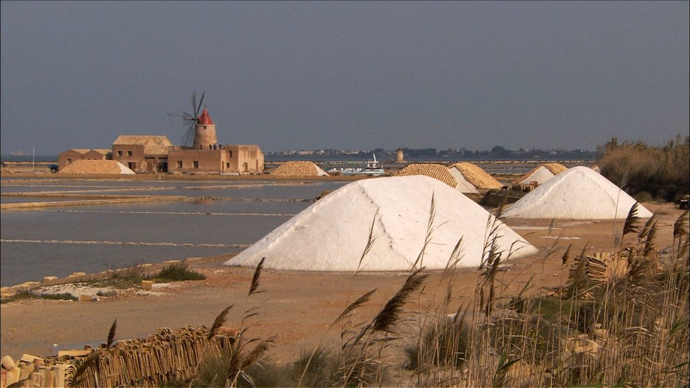 FFOTW_204_salt and windmills.jpg