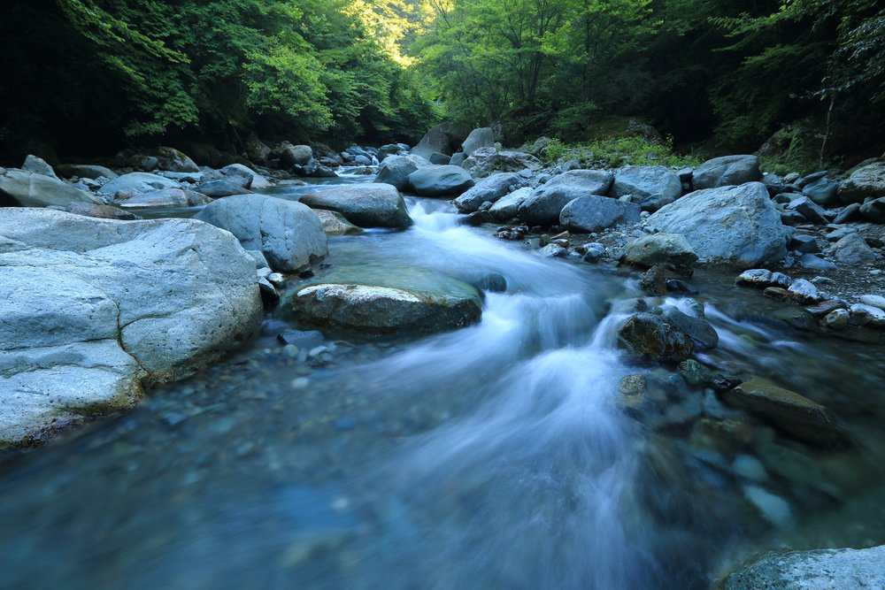 Following the path of least resistance makes rivers and men crooked - -Henry David Thoreau