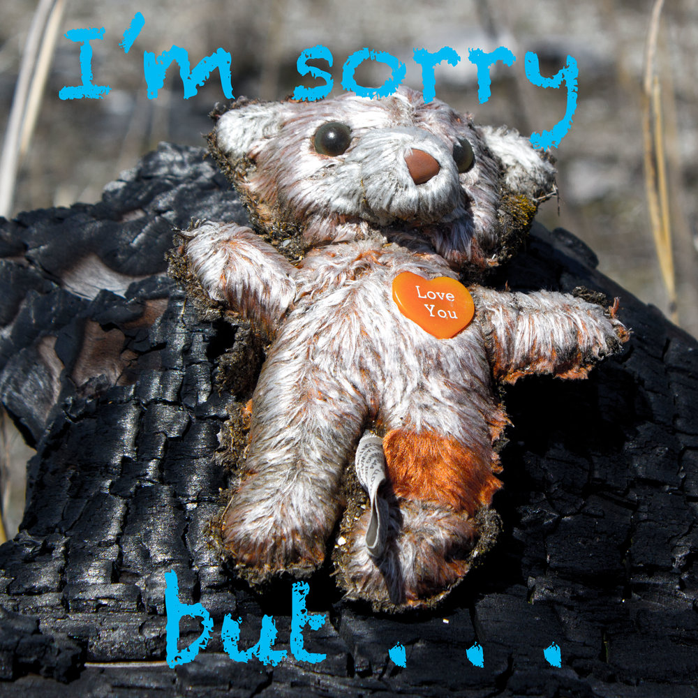 """Not sorry - If anything follows the apology than it really isn't an apology and we are shifting the blame to the other person.Saying """"I'm sorry I hit you but you made me mad"""" is saying it is his or her fault you hit them and you are not sorry for your actions."""