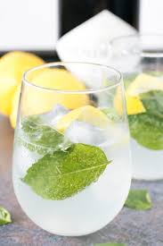 Gin and Tonic with Basil