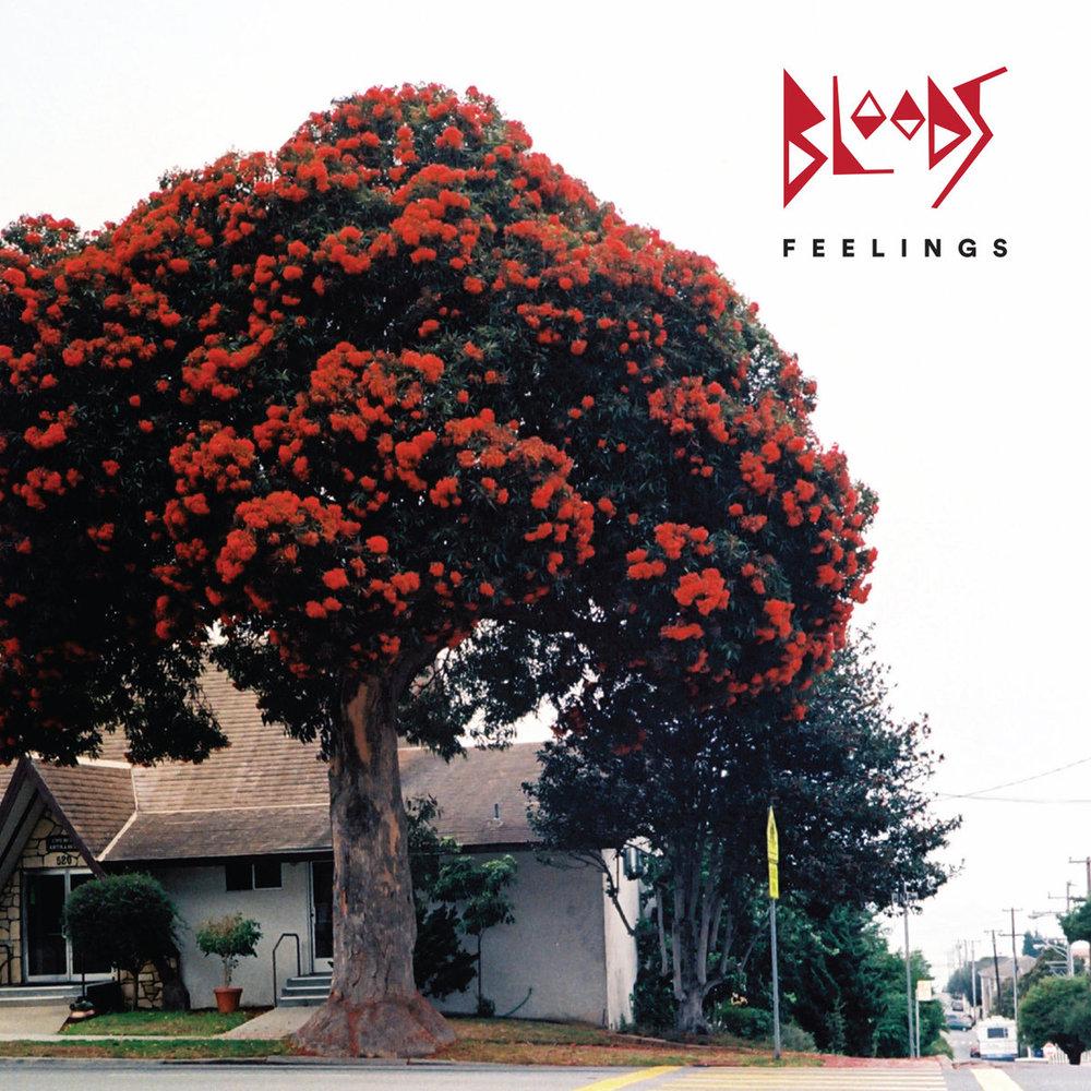 - BloodsFeelings (Album - 2018)Producer, engineerChoice cut - Bring My Walls Down
