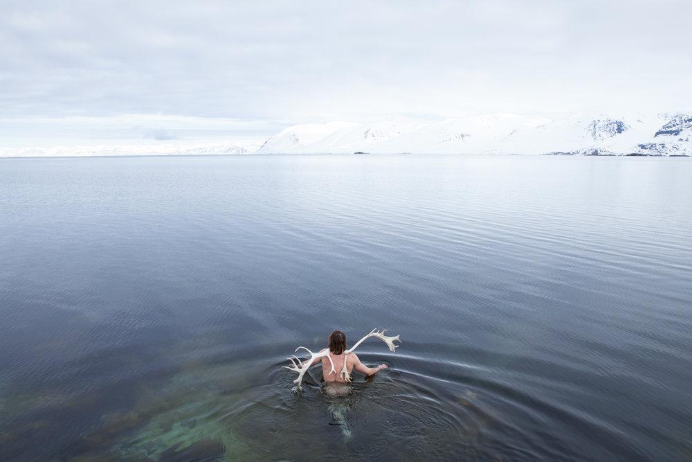 books Arctic-43-2.jpg