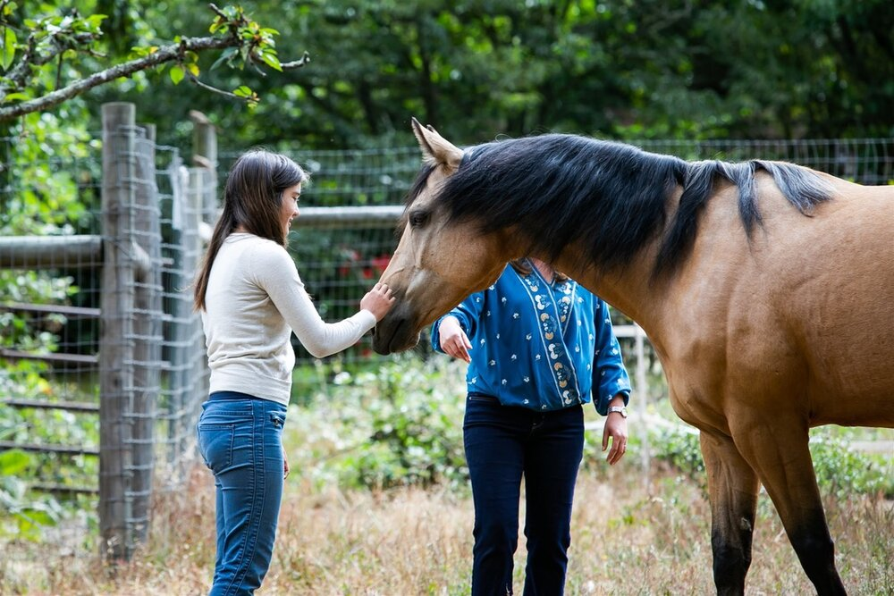"""""""I felt heard by the horses and their body language."""""""