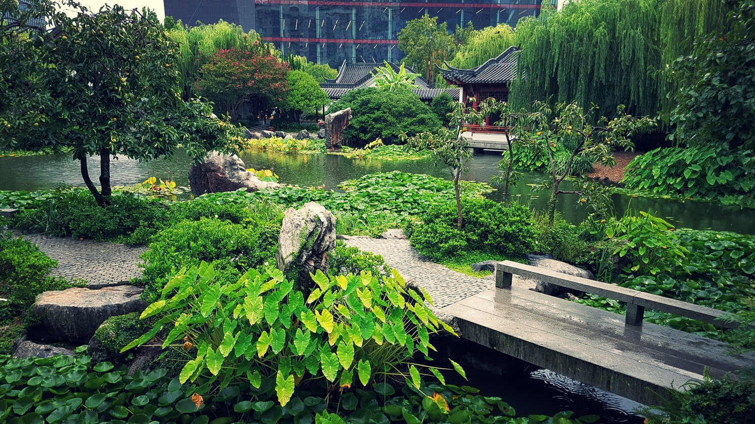 Chinese Garden Landscape Chinese garden of friendship darling harbour sydney curated ground the chinese garden of friendship in darling harbour sydney was established in 1988 as a centenary gift from sydneys sister city guangzhou in southern workwithnaturefo