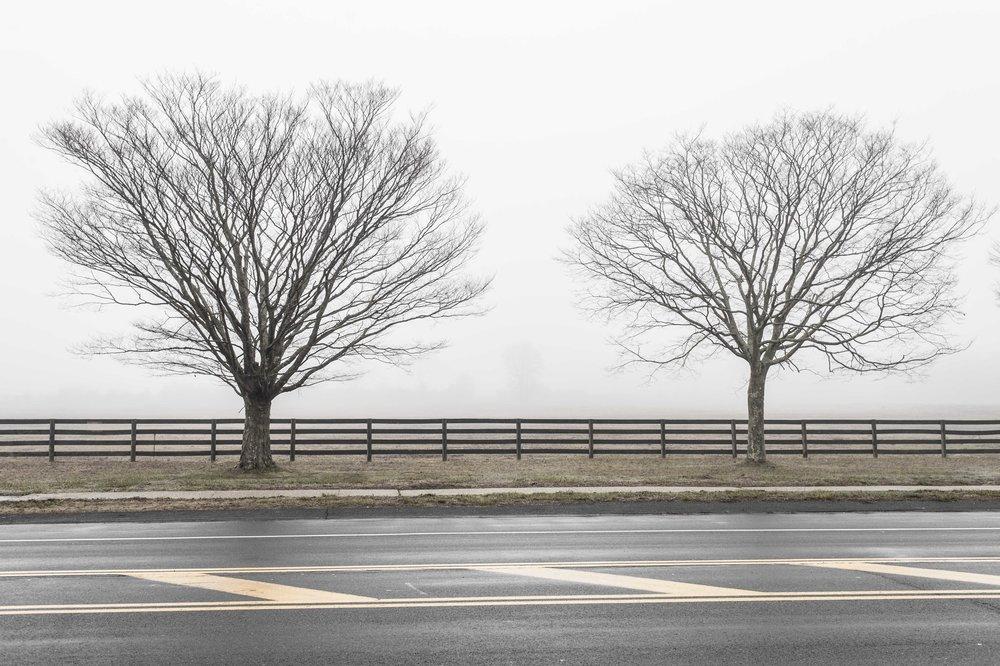 foggylandscape_stitch.jpg