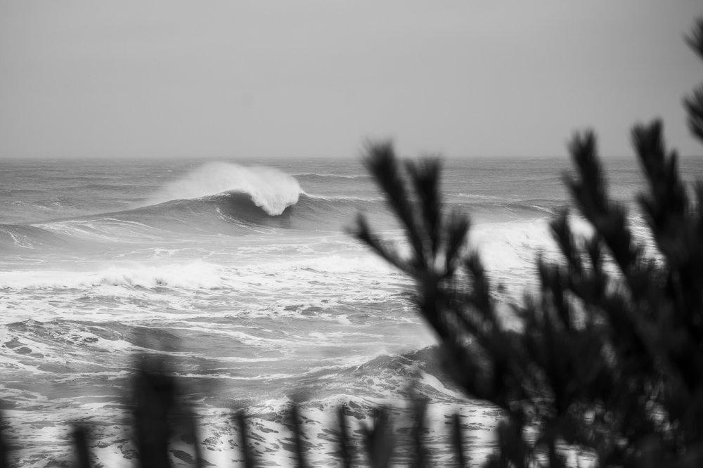 stormSURF-6.jpg