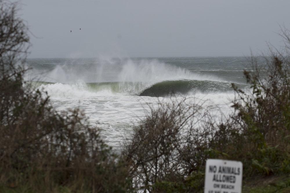 stormSURF-3.jpg