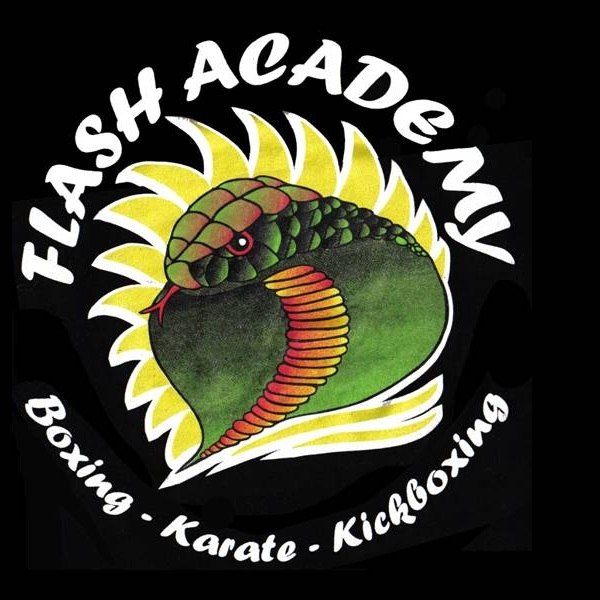Flash Academy