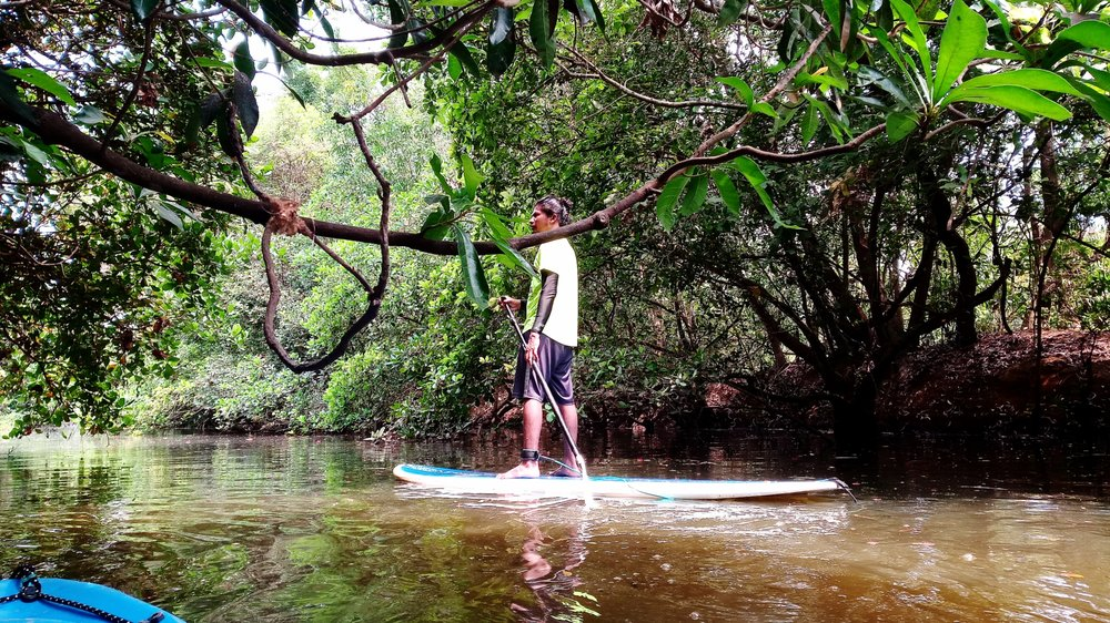 Copy of River SUP in Goa