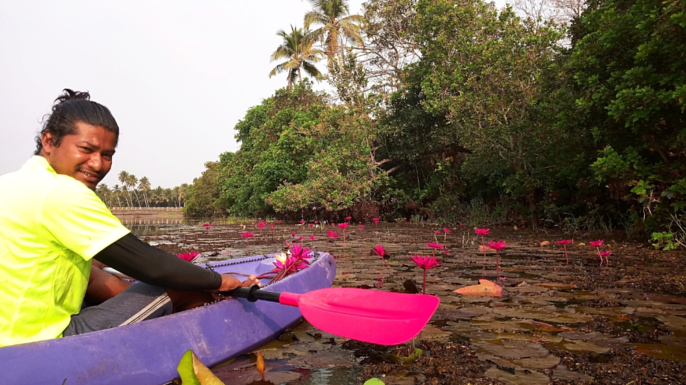 Copy of Lily Pond Kayaking in Goa