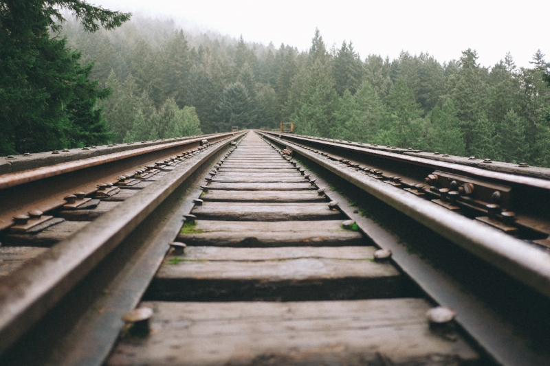 https___www.lifeofpix.com_wp-content_uploads_2016_05_Life-of-Pix-free-stock-rails-forest-firs-PaulJarvis.jpg