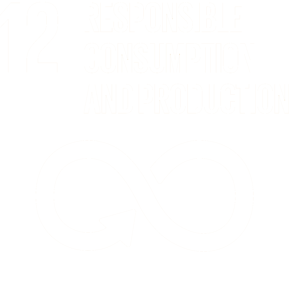 Sustainable Goals 12.png