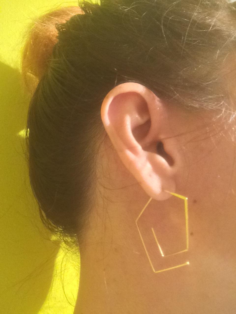 My $10 earrings!