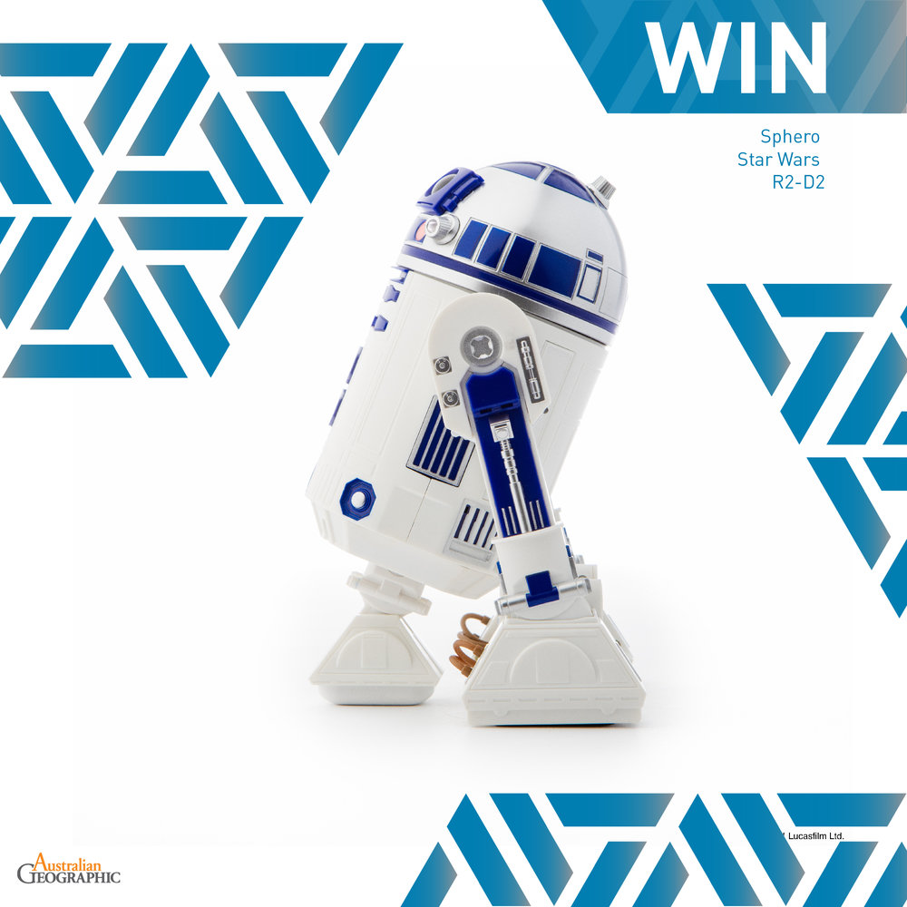 Social Competition Template-r2d2.jpg