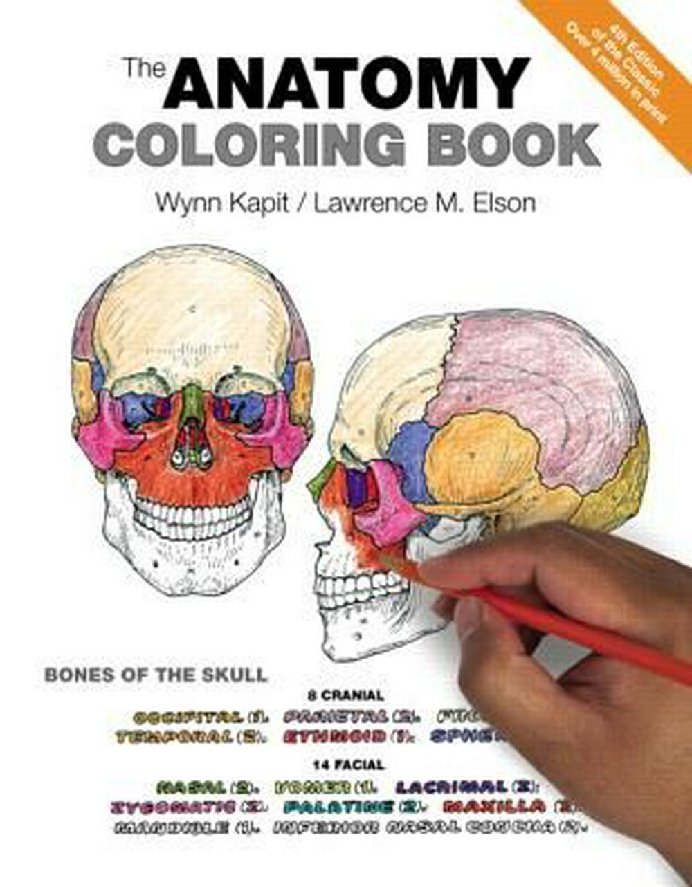 Anatomy Colouring Book