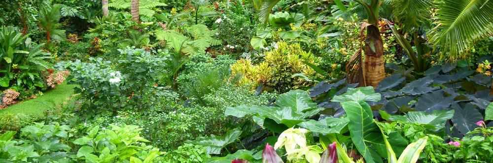1399x464_cobblers-cove-huntes-garden content.jpg