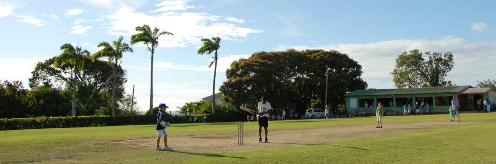 1399x464_cricket_main_image.jpg