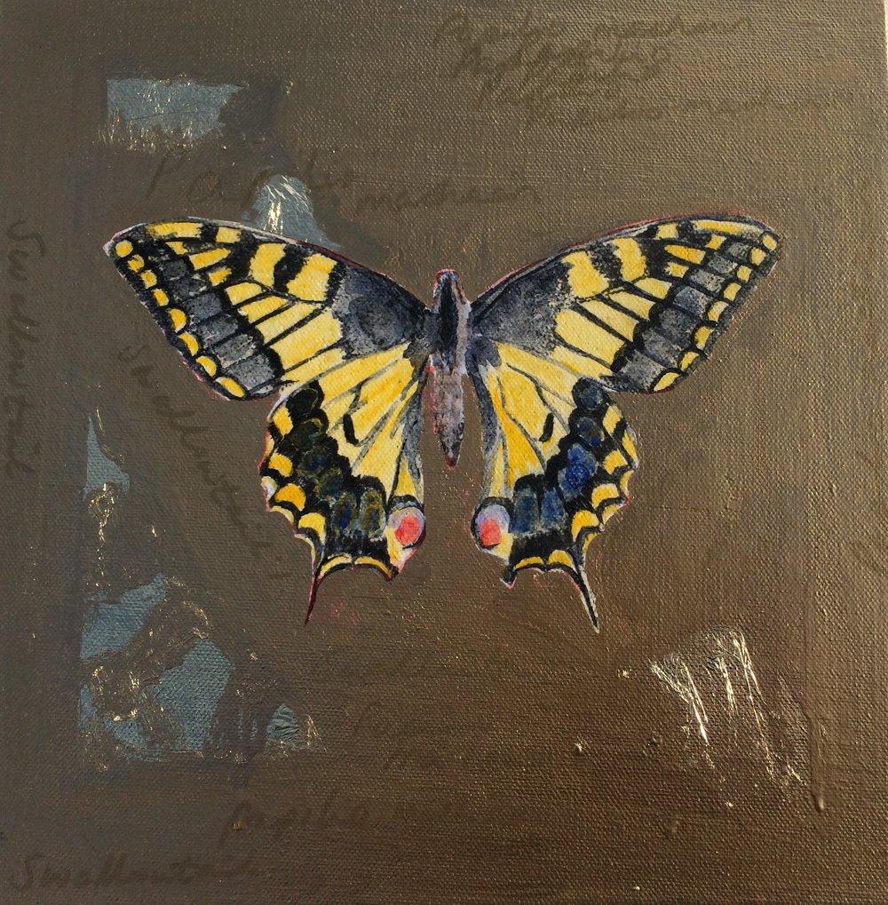 'Swallowtail'