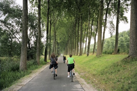 A cycle ride is a great way to explore the city