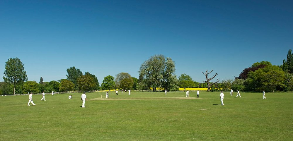 Cricket at Escrick Park